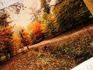 ペルシャ絨毯タブリーズ秋の風景タペストリー49106