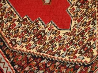 セネキリムのとっても綺麗な模様と色126000
