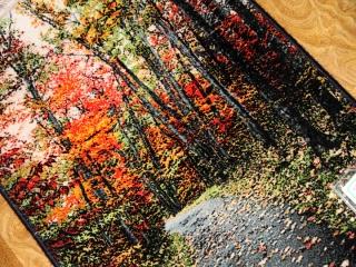 じゅうたん紅葉の風景、自然景色のペルシャ50102