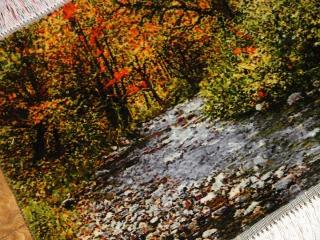 森の風景と川のピクチャー手織りタブリーズ絨毯50106
