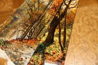 ペルシャ絨毯ピクチャ模様タブリーズ49110