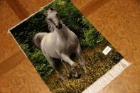 馬のピクチャー模様、ペルシャ絨毯タブリーズ55353